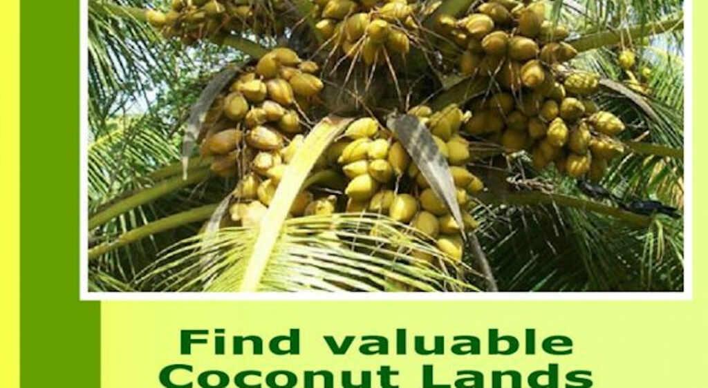 www.coconutlands.lk