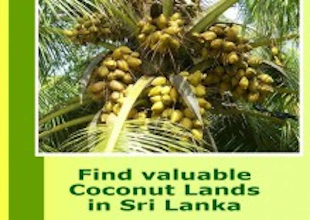 www.coconutlands.lk